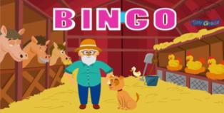 Bingo a